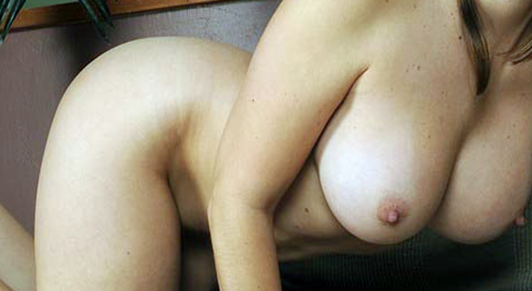 lupo porno